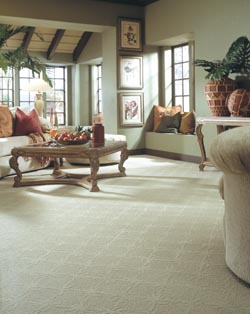 Carpet Flooring in Ocoee, FL.